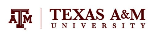 Texas A&M Master's Program in I/O Psychology