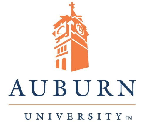Auburn University MISE Master of Industrial and Systems Engineering