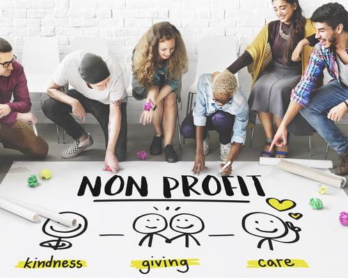 organizational psychology for nonprofits